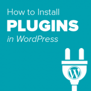 Step by Step Guide to Install a WordPress Plugin for Beginners