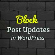 Block Post Updates in WordPress