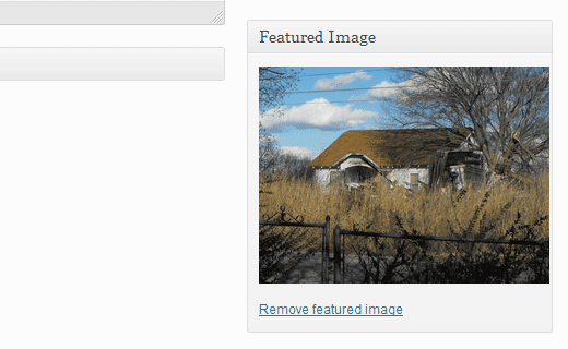 A featured image added in a WordPress post