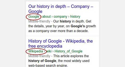 Website name displayed in search results