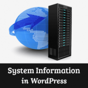 How to Quickly Get System Information in WordPress