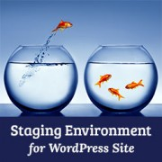How to create a staging environment for WordPress site