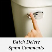 How to Quickly Batch Delete Spam Comments in WordPress