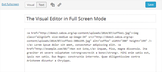 Text editor in full screen mode