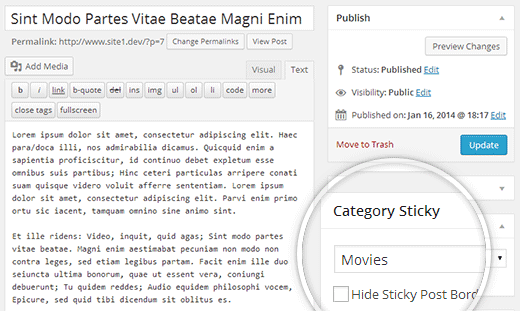 Category sticky metabox on post edit screen in WordPress
