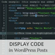 How to Easily Display Code on Your WordPress Site