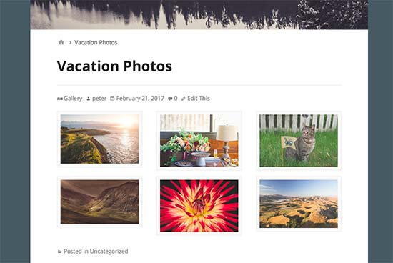 Default WordPress gallery preview
