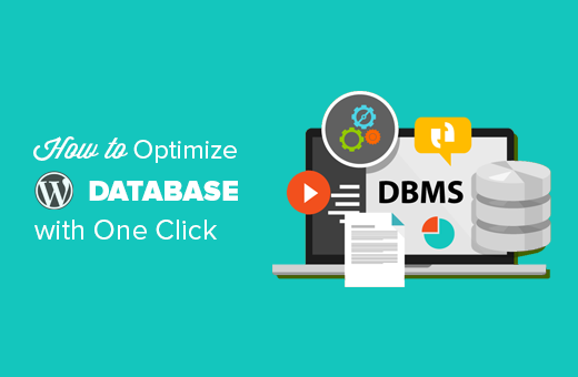 How to optimize WordPress database