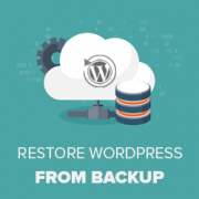 Beginner's Guide: How to Restore WordPress from Backup