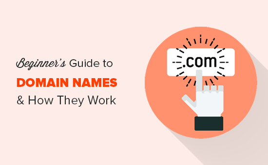 Domain names and how do they work?