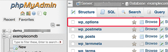 WordPress options table
