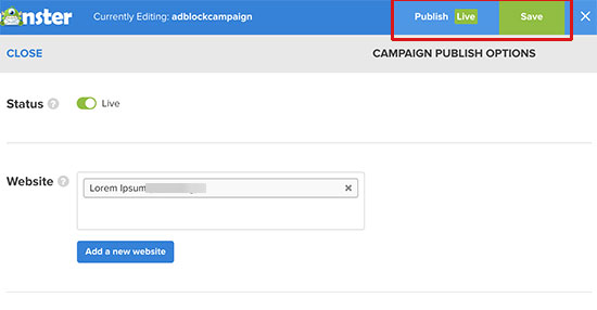 Save and publish your campaign