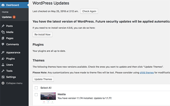 Check for WordPress and theme updates