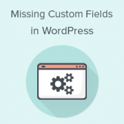 How to Fix Custom Fields Not Showing in WordPress
