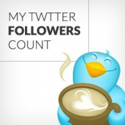 How to Display Twitter Followers Count as Text in WordPress