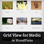 How to Add Grid View for Media Library in WordPress