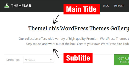How to add subtitle for posts and pages in wordpress themelab subtitle ccuart Image collections