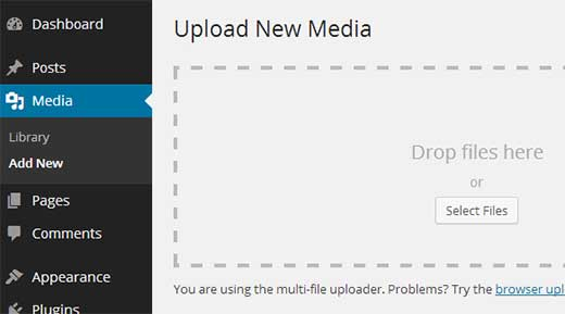 Upload social media icons to WordPress Media Library