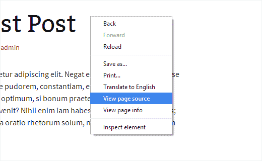 Opening page source view in Google Chrome