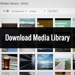 download media wordpress