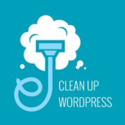 How to Clean Up Your WordPress Database for Improved Performance