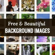 How to Find Beautiful Background Images for Your WordPress Site