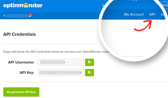 Copy OptinMonster API username and key