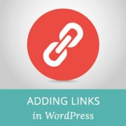 Beginner's Guide on How to Add a Link in WordPress