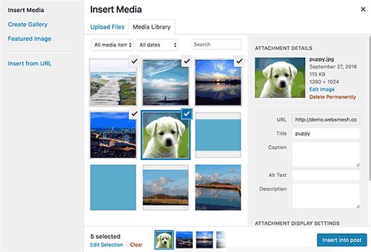 WordPress'te yaygın görüntü sorunları