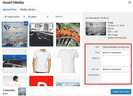 WordPress'teki resimlerinize alt ve başlık etiketleri ekleyin