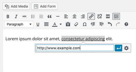Adding link in WordPress