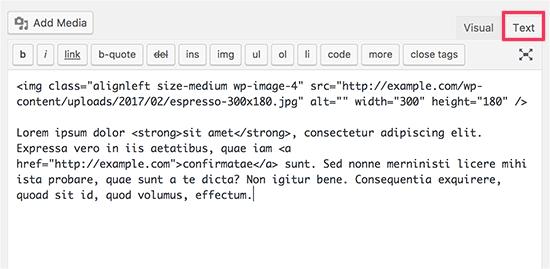 Text editor in WordPress