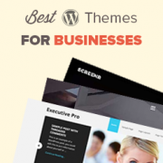 30+ Best WordPress Business Themes (2017)