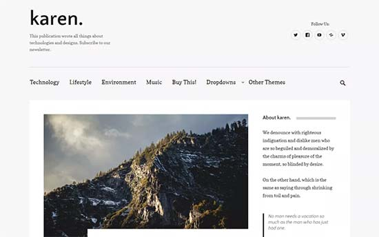 40 Best Simple WordPress Themes You Should Try (2017)