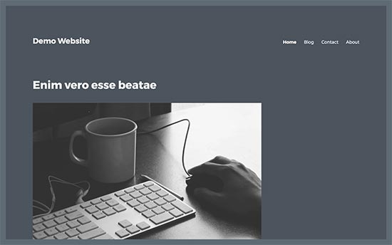 Blank sidebar area in a WordPress theme