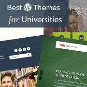 22 Best WordPress Themes for Universities