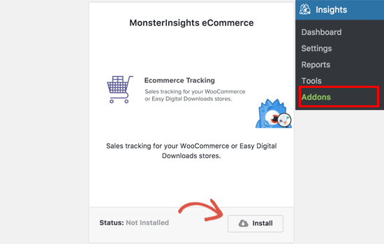 MonsterInsights ecommerce addon