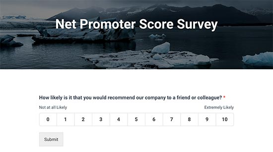 Net Promoter Score survey preview