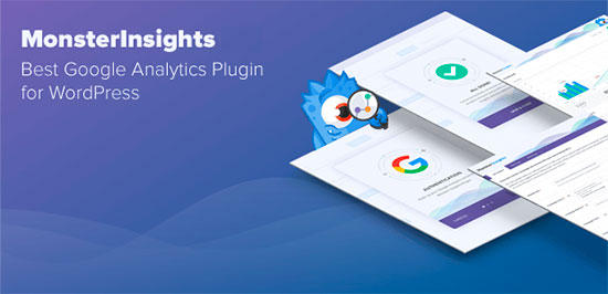MonsterInsights for your business Analytics