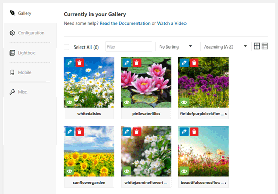 Images in Envira Gallery Builder