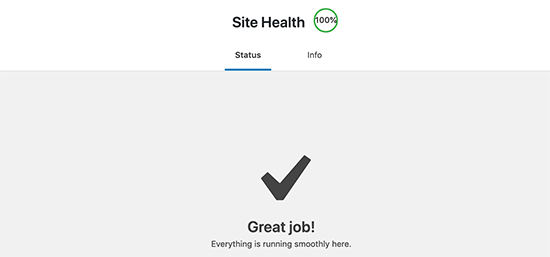 Getting a perfect score in WordPress site health