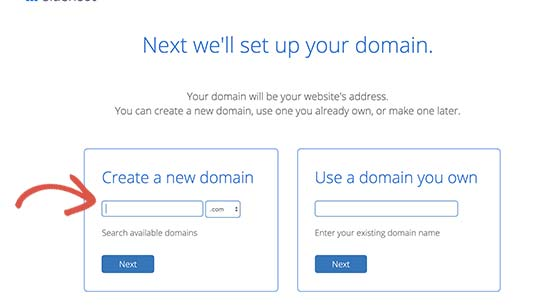 Select a domain name