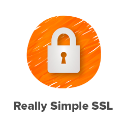 Get 40% off Really Simple SSL
