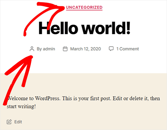 view wordpress metadata on front end