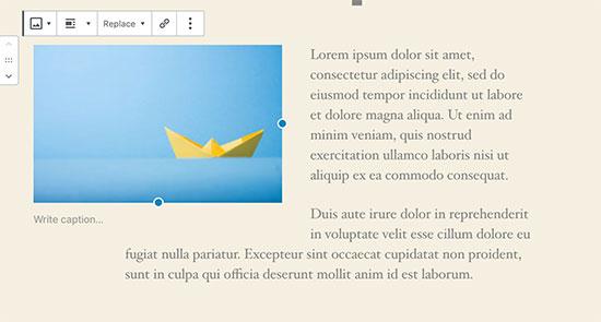 Immagine allineata a sinistra con testo a destra