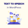 How to add text to speech in WordPress
