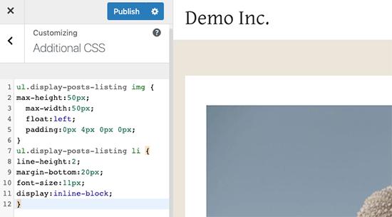 Özel CSS kutusu