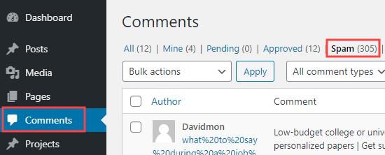 Fare clic sulla scheda Spam per visualizzare un elenco di commenti che sono stati contrassegnati come spam