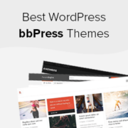 21 Best WordPress Themes for bbPress