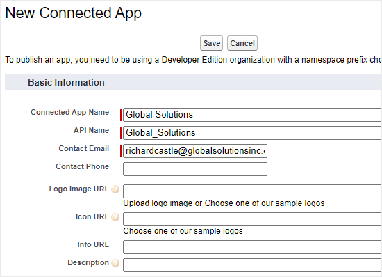 Entering the details for your Salesforce app